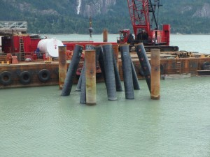 Photo 4 - Gangway landing platform piles ready for concrete falsework installation